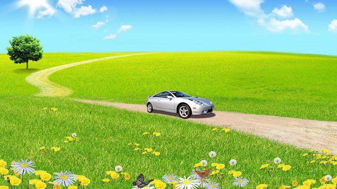 обслуживание автомобиля летом
